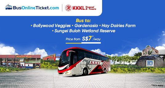 KKKL Travel & Tours offers bus to Bollywood Veggies, Gardenasia, Sungei Buloh Wetland Reserve & Hay Dairies Farm